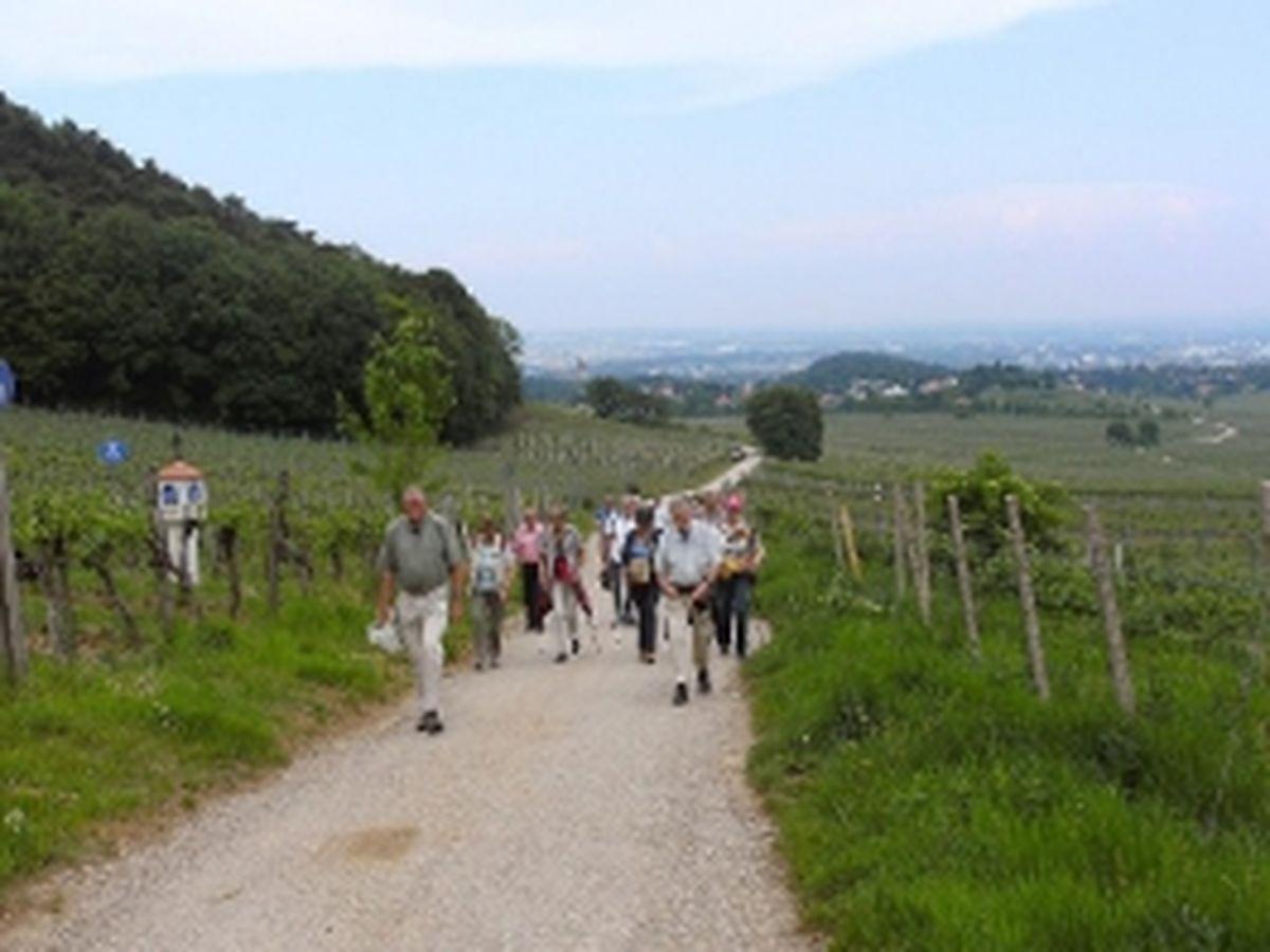 Besuch Perchtoldsdorf 2012_13