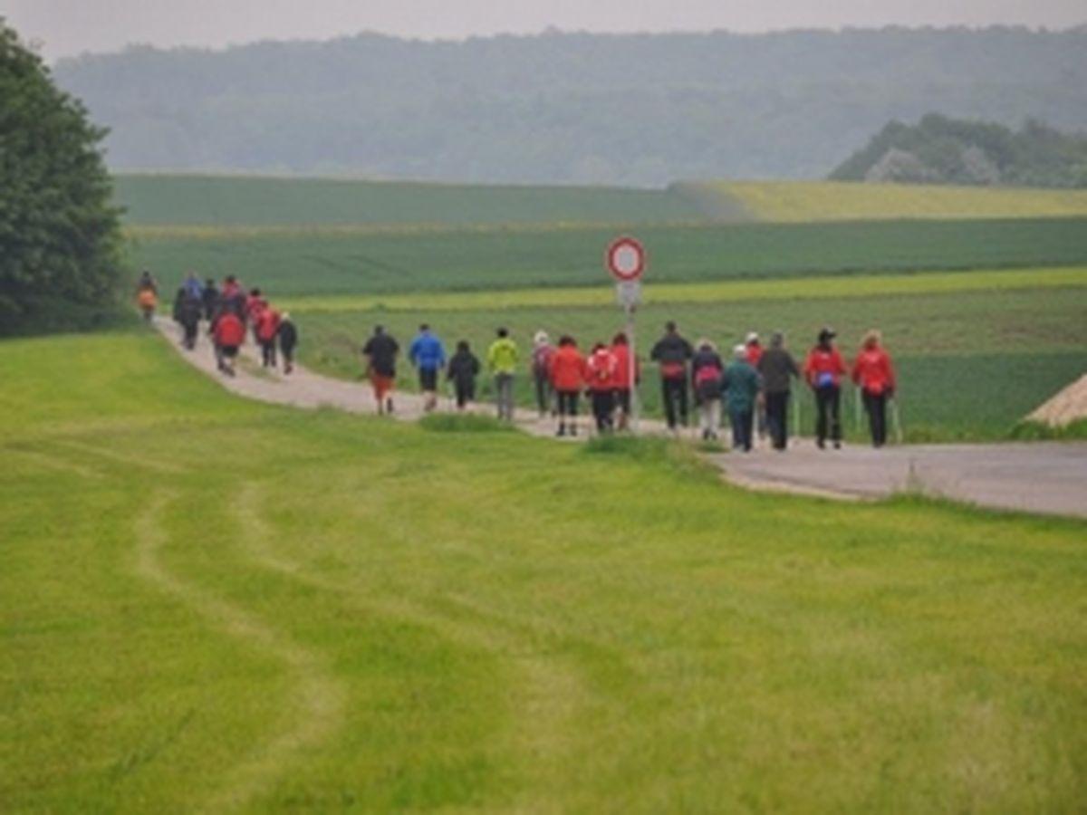 Nordic Walking Event 2012_1