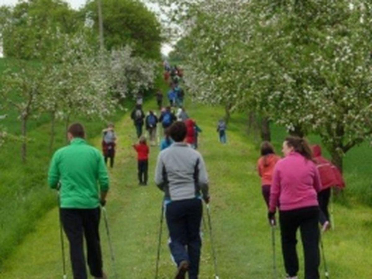 Nordic Walking Event 2013_10