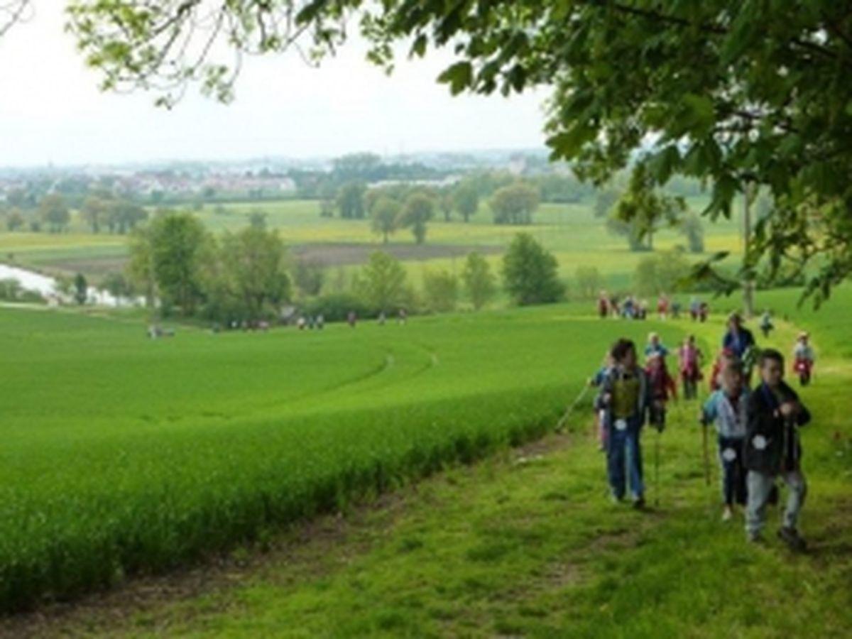 Nordic Walking Event 2013_3