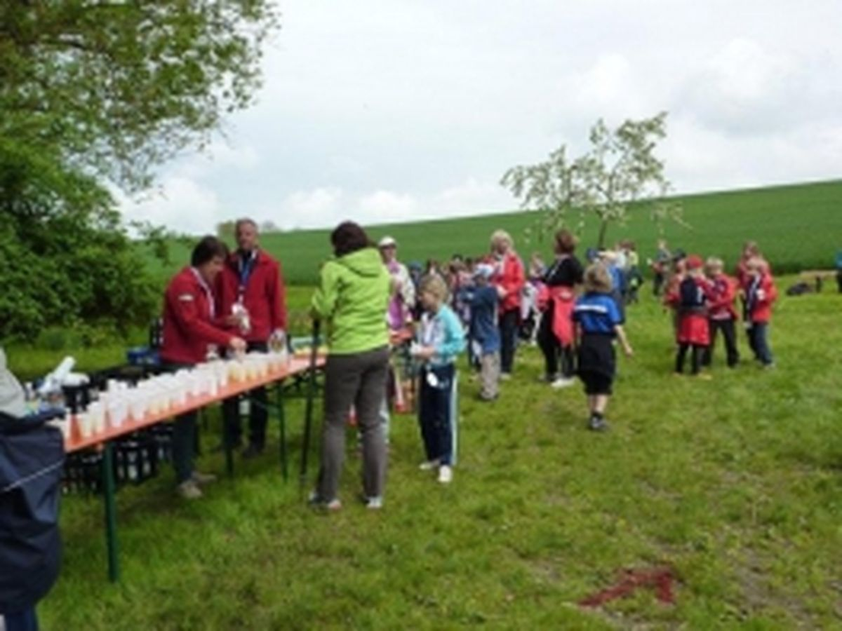 Nordic Walking Event 2013_8