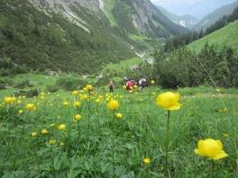 Bergtour Allgäu_8